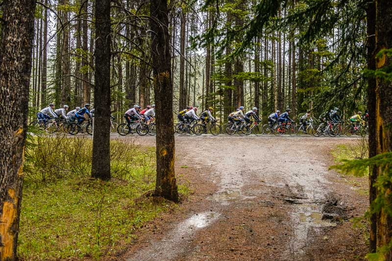 I've always loved the uniform Lodgepole Pine Forests along the Bow Valley Parkway, which I included in this image of the Lake Louise Road Race during the Banff Bike Fest.