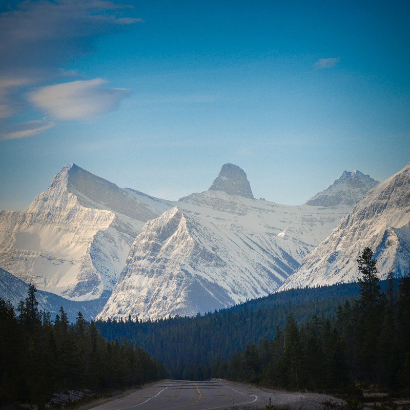 Icefield Parkway Roadtrip