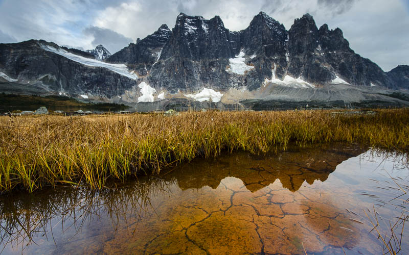 The Tonquin Valley is my favorite hiking destination in the Jasper National Park Backcountry.