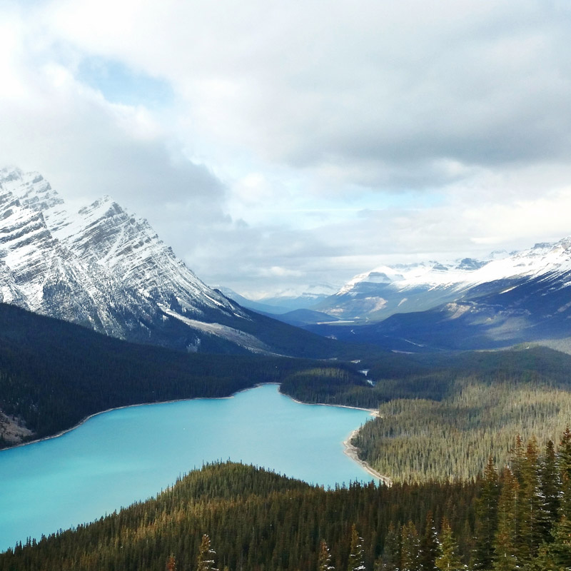 A photograph of the iconic Peyto Lake, made with a Samsung Galaxy s5 Active