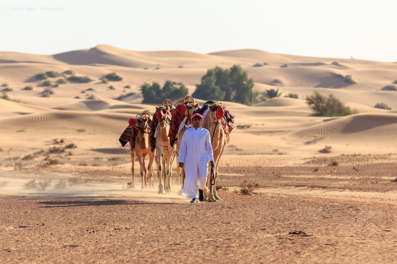 Walking across Dubai desert with Jewelszee photography