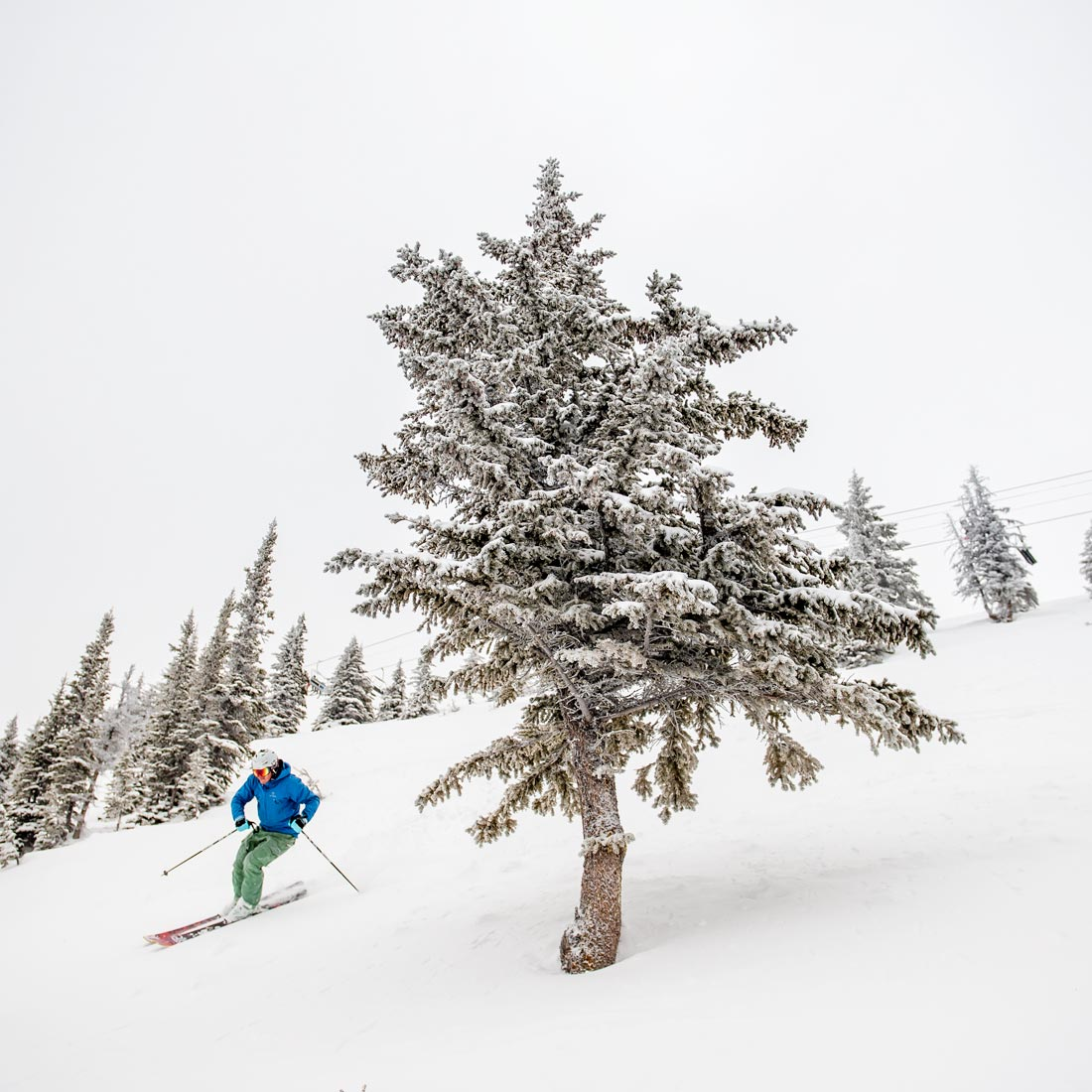 A skier links turns through the forested runs.