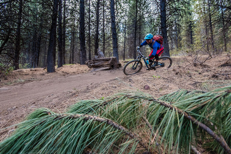 Cog Wild owner Lev Stryker showing off the speed of the Bend, Oregon, MTB trails.