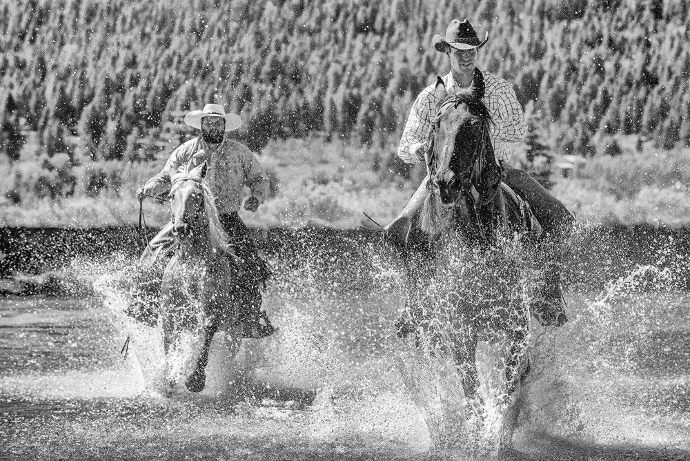Horse fording the Snake River in Grand Teton National Park
