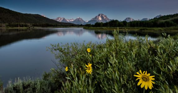 Pre-dawn at Oxbox Bend on the Snake River in Grand Teton National Park