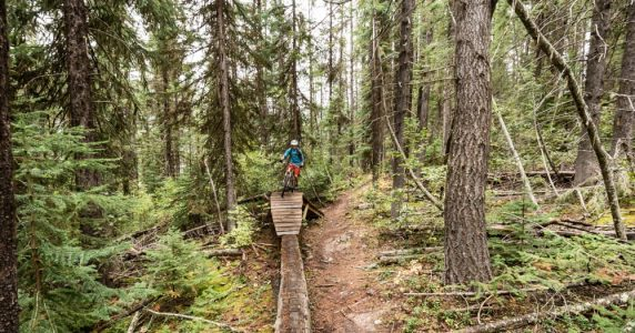 Five Reasons to Mountain Bike in Golden, BC, This Summer