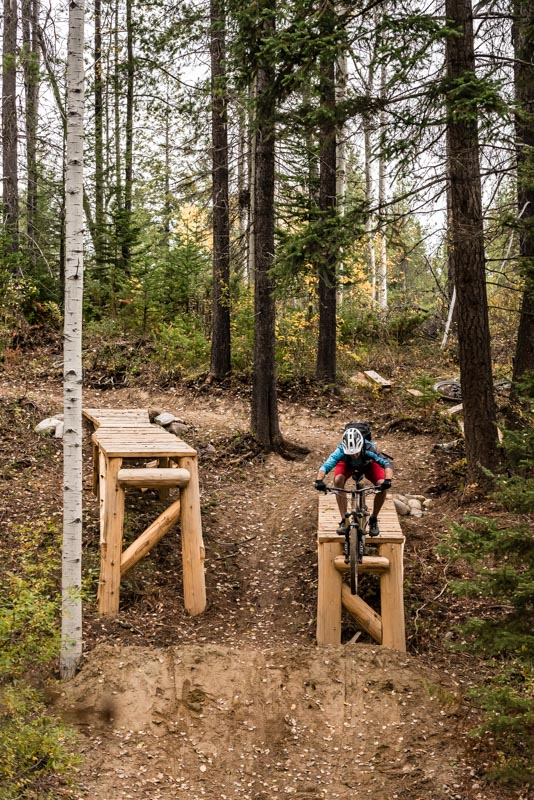 The new Hymenoptera trail offers plenty of big jumps, drops, and balls-to-the-wall berms.