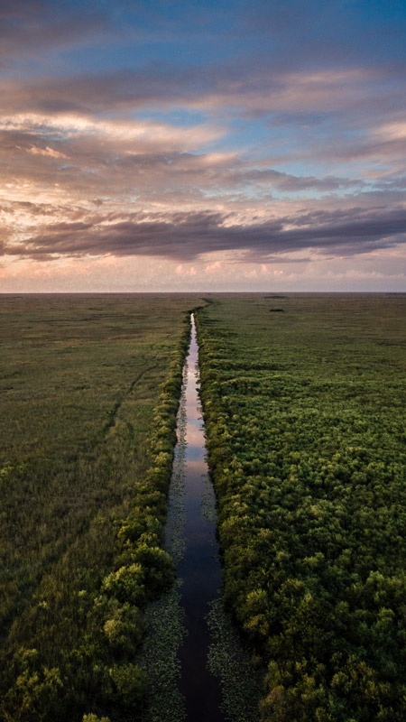 The Florida Everglades stretch forever when viewed from the air