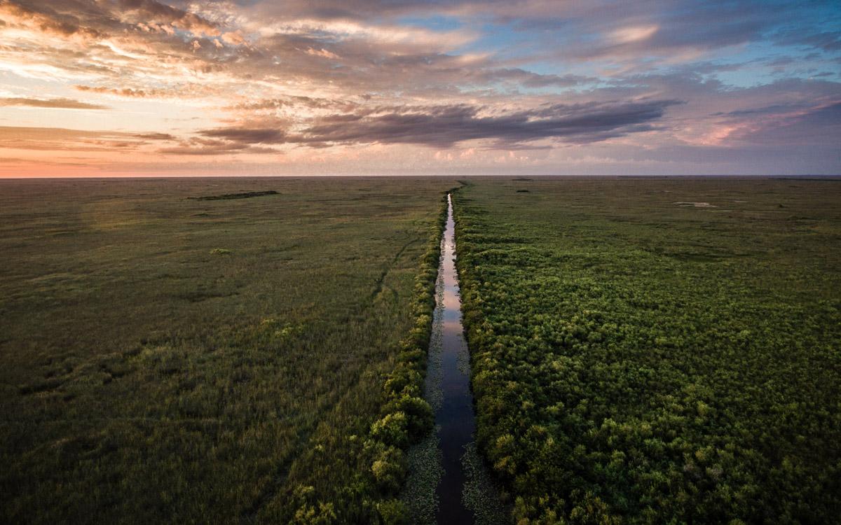 Aerial of the Florida Everglades
