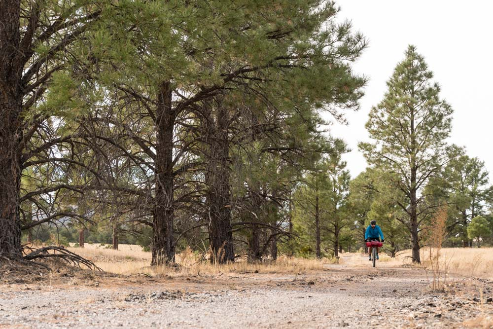 Riding the Old State Highway was a highlight of the bikepacking route