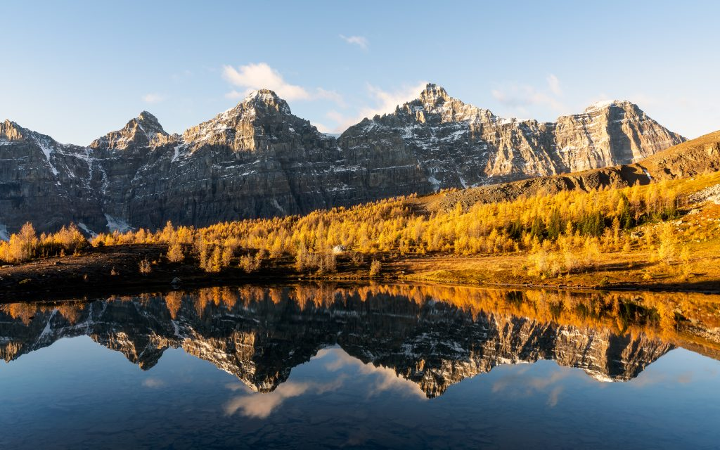 Golden larches highlight the ridgeline above the Valley of the Ten Peaks in Banff National Park.