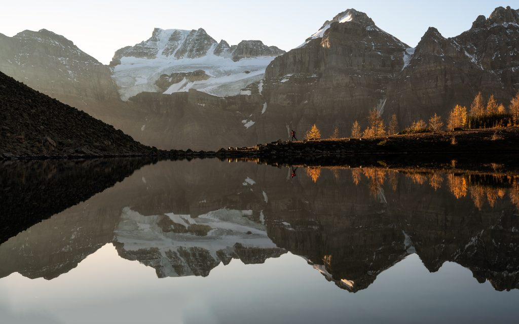 A lone runner passed glowing autumn larch trees in the Larch Valley, above Moraine Lake in Banff National Park.